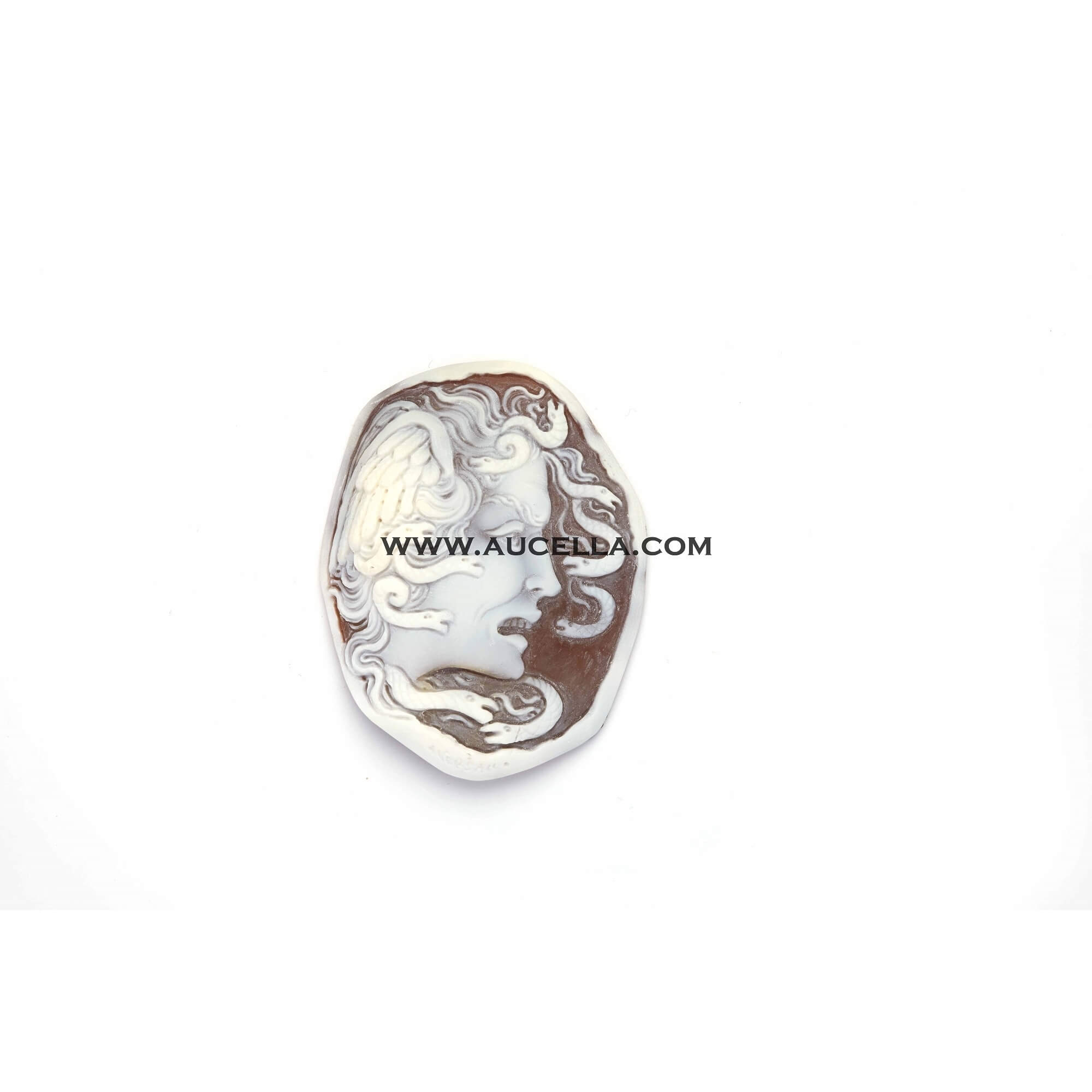 Cameo signed Aversano